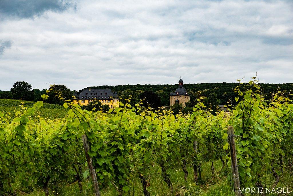 Moritz-Nagel-Schloss-Vollrads-Entlaubung-2016-91-von-134.jpg