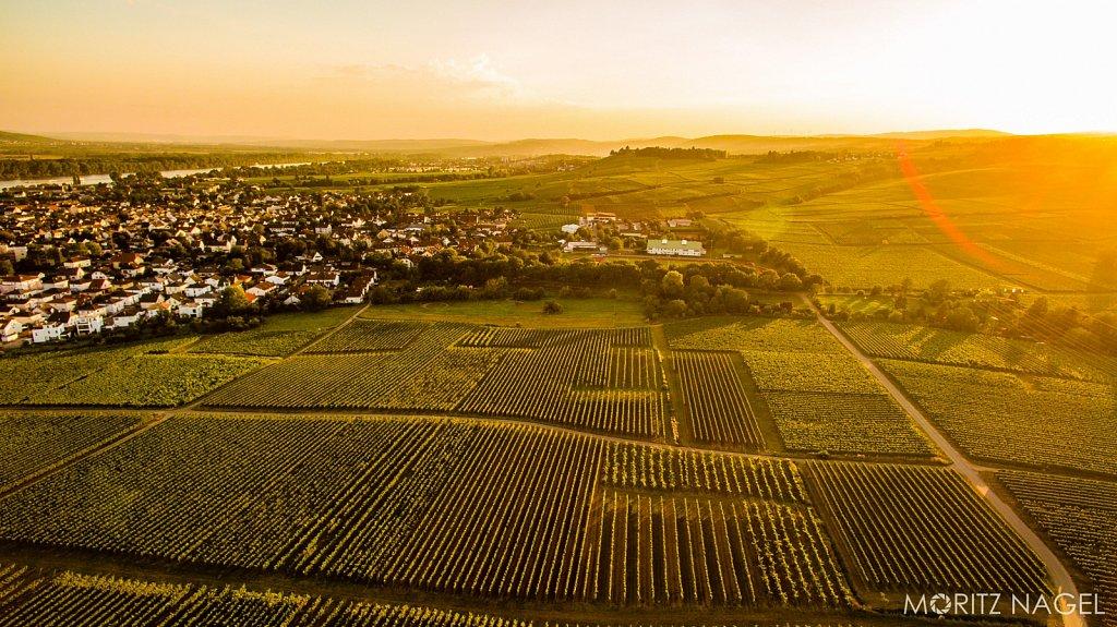 Schloss-Vollrads-Sonnenuntergang-Luftaufnahme-Moritz-Nagel-2016-17.jpg