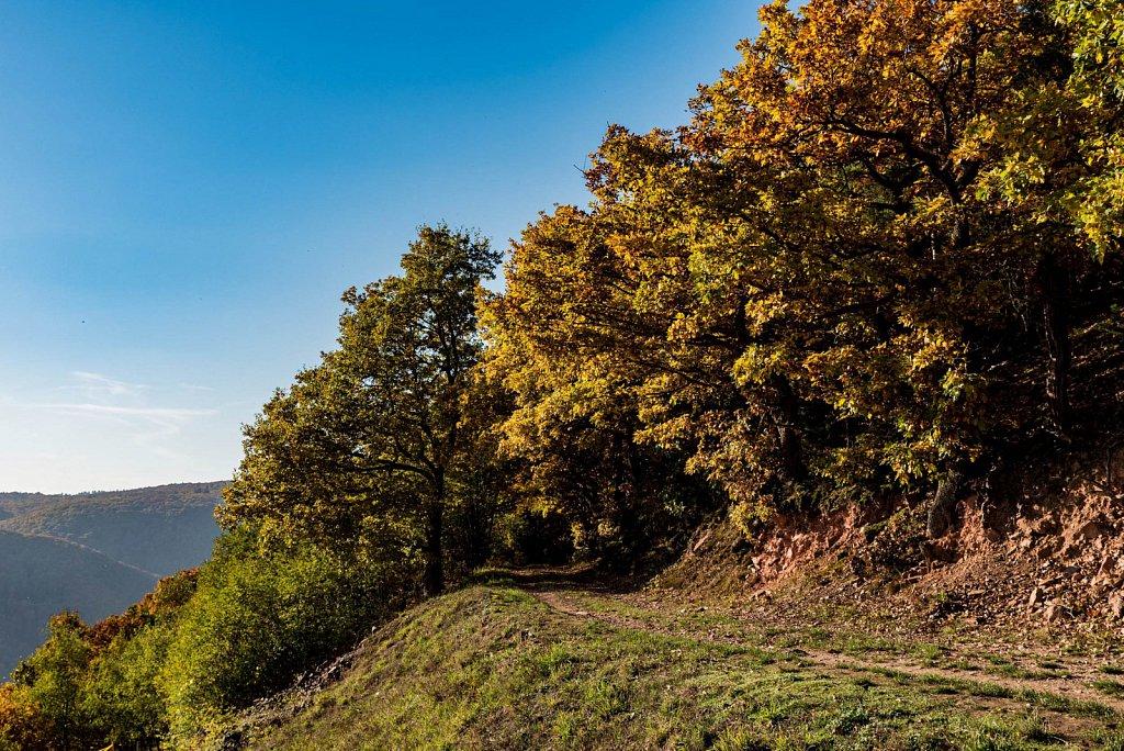 Moritz-Nagel-Wanderung-Ringticket-2016-126-von-221.jpg