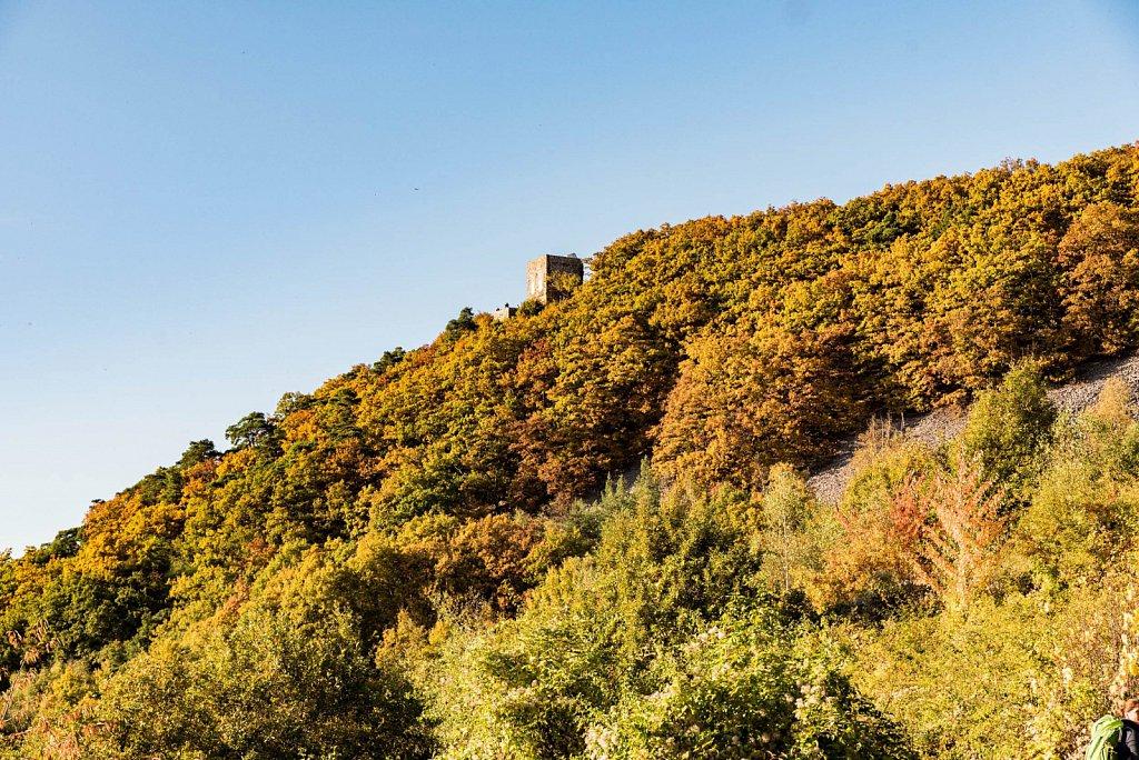 Moritz-Nagel-Wanderung-Ringticket-2016-151-von-221.jpg